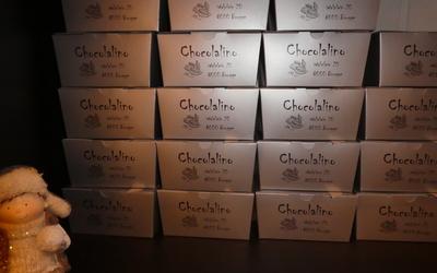 CHOCOLALINO - Gallery